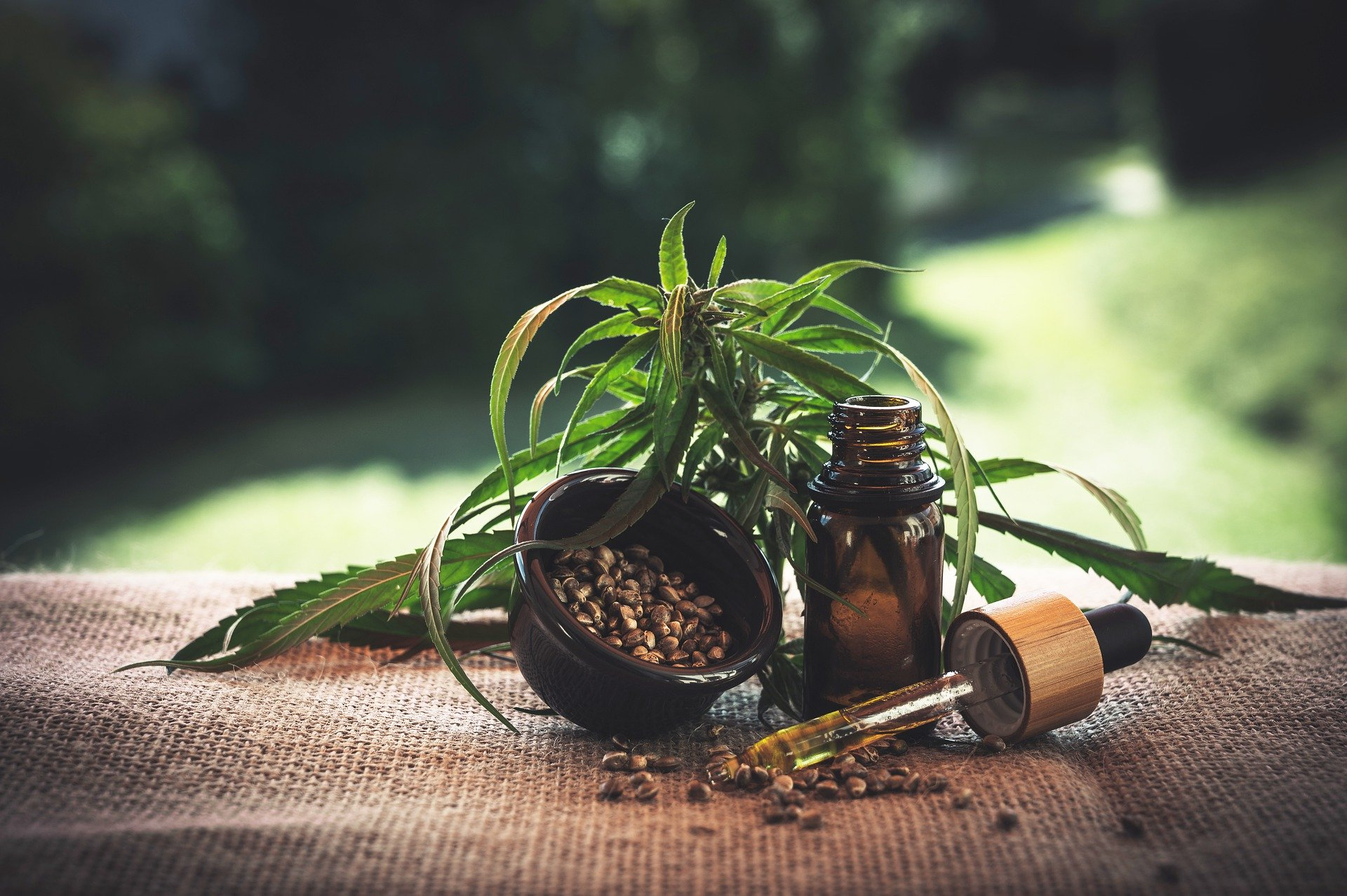 3 quality CBD oils you can afford. count(alt)